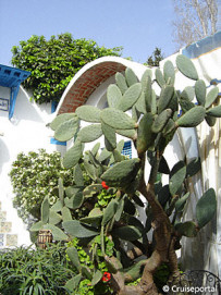 Sidi Bou Said - attractions